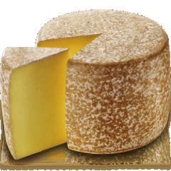 Fromage Cantal AOP - Cantal (fromage) Le cantal (ou fourme de cantaɬ) est un fromage français à pâte pressée non cuite, originaire du Massif central et fabriqué à partir de lait cru de vache ou pasteurisé. L'appellation d'origine de cette fourme est préservée par une AOC en France et par une AOP au niveau européen.