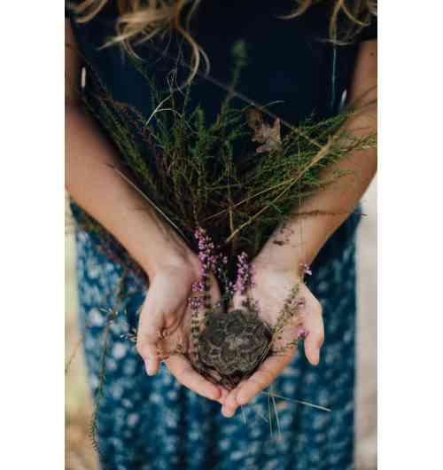Shampoing solide cheveux normaux - Shampoing naturel, fait à partir de poudres de plantes bio et d'huiles végétales bio.
