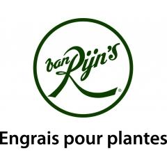 van Rijn's - JARDIN, MOBILIER DE PLEIN AIR & VERANDA