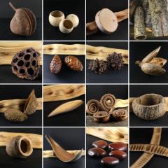 Matières végétales brutes - Collection de graines, coques, écorces naturelles. De quoi attiser votre créativité !