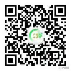 Anshun Shengjian Bamboo Weaving Artwork Co.Ltd - OBJETS DE DECORATION