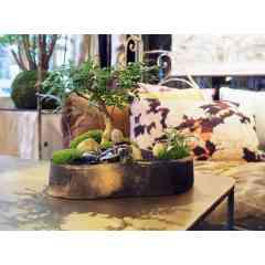 Keshiki Okina - <p>Le Keshiki est un micro paysage dans un contenant artisanal en c&eacute;ramique. Le keshiki Okina est le grand mod&egrave;le.</p> <p>On retrouve les &eacute;l&egrave;ments du jardin japonais ; le min&eacute;ral, parfois la mousse et le v&eacute;g&eacute;tal, tout en harmonie.</p> <p>La c&eacute;ramique est la terre protectrice de ce paysage.</p>