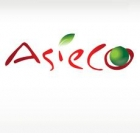 ASIECO-GINSENG - BEAUTE & BIEN-ETRE / SPAS