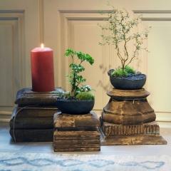 Keshiki Shudan - <p>Le Keshiki est un micro paysage dans un conteant artisanale en c&eacute;ramique. Le shudan est le mod&egrave;le interm&eacute;diaire entre le petit et le grand.</p> <p>On retrouve les &eacute;l&egrave;ments du jardin japonais ; le min&eacute;ral, parfois la mousse et le v&eacute;g&eacute;tal tout en harmonie.</p> <p>La c&eacute;ramique est la terre protectrice de ce paysage.</p>