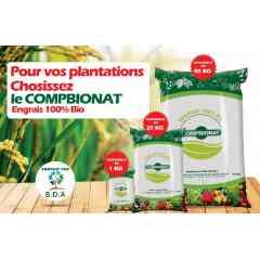 Le COMPBIONAT - Le Compbionat est un engrais terre biologique, utilisé pour apporter aux plantes des compléments d'éléments nutritifs de façon a améliorer leur croissance, et à augmenter le rendement et la qualité des cultures. Il est essentiellement compose d'excréments animalier, de feuilles mortes et d'ordure ménagères. Le Compbionat transforme la fertilisation du sol