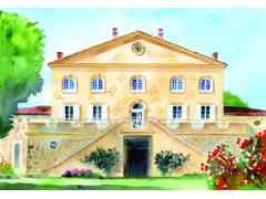 STRUK-OHANA - PLAISIRS GOURMANDS - VINS & GASTRONOMIE