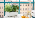 """Potager Véritable® - <p>Le Potager Véritable®<strong>fonctionneen toute autonomie</strong>. Il fournit l'éclairage, l'arrosage et les nutriments à vos plantes. Il fonctionne avec des recharge naturelles de plantes appelés """"Lingots®"""", fournies avec le Potager. Il ne vous reste plus qu'à récolter vos aromates, fleurs comestibles et mini-légumes et à déguster ! Le réservoir d'eaupermet jusqu'à<strong>3 semaines d'autonomie</strong>. Vous pouvez partir en vacances, votre Potager Véritable® s'occupe de tout en votre absence.</p> <p>La version <strong>Smart</strong> s'adapte à votre environnement et module l'intensité de l'éclairage en fonction de celle de votre intérieur, pour encore plus d'efficacité.</p>"""