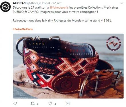 Annonce Foire de Paris Twitter