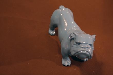 chien bleu img1