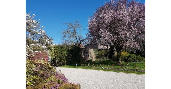 jolis jardins nos inspirations du moment foire de paris. Black Bedroom Furniture Sets. Home Design Ideas