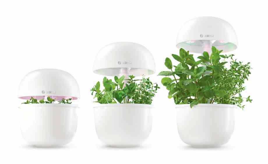 Bosch Electromenager potager Smartgrow