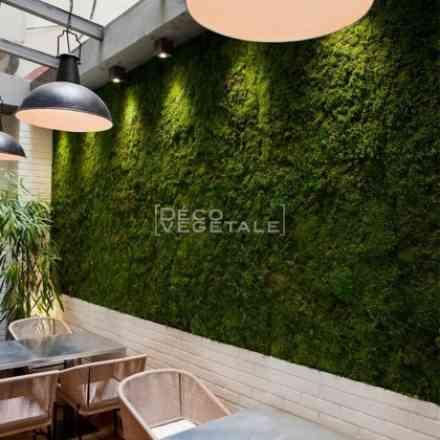 Foire de Paris - Jardin urbain - Mur vegetal