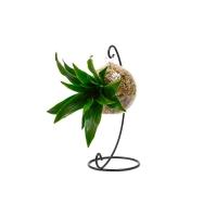 Foire de Paris - Boby la plante