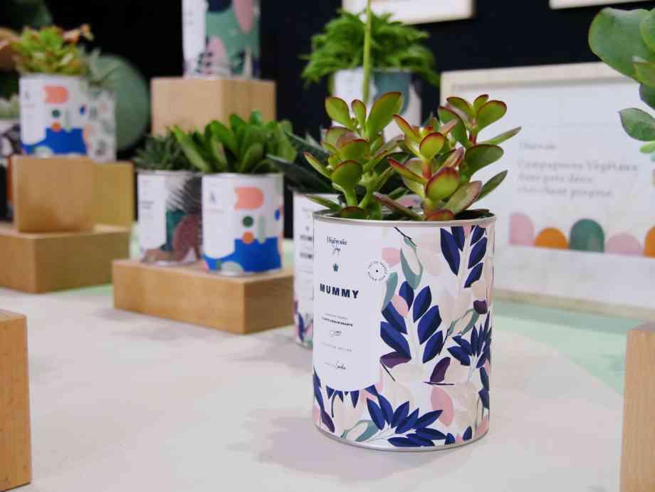 Les pots et plantes tendances de la marque Diaiwaie