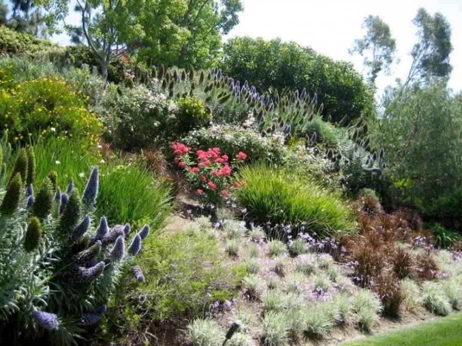 Le mag - 5 idées pour aménager un jardin en pente